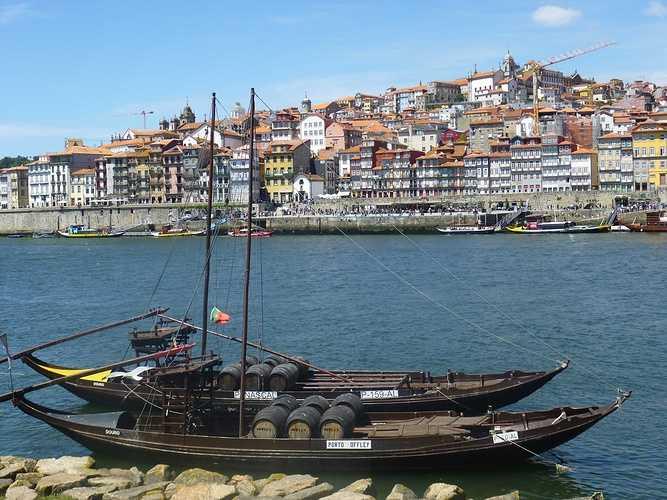Voyage au Portugal des BTS 2 Production Horticole p1040689