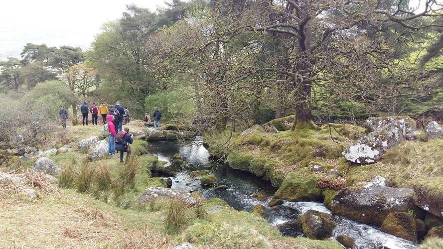Séjour au Dartmoor pour nos étudiants en BTS Aménagement Paysager 0
