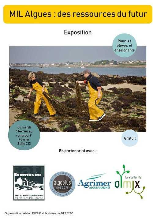 « MIL : Les algues, ressources du futur » 0