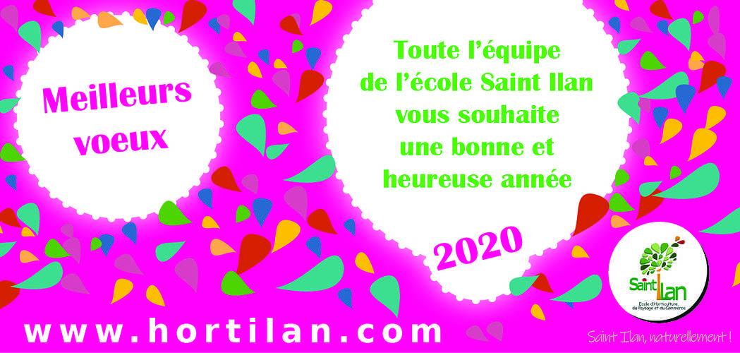 Meilleurs voeux 2020 0