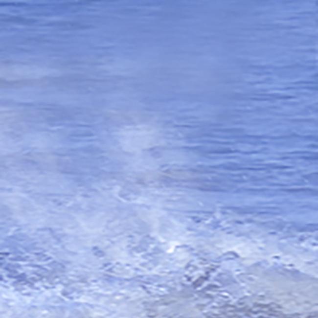 """Semaine eau"" - classe de STAV 2"